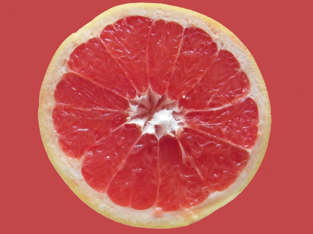 Grapefruit im Querschnitt