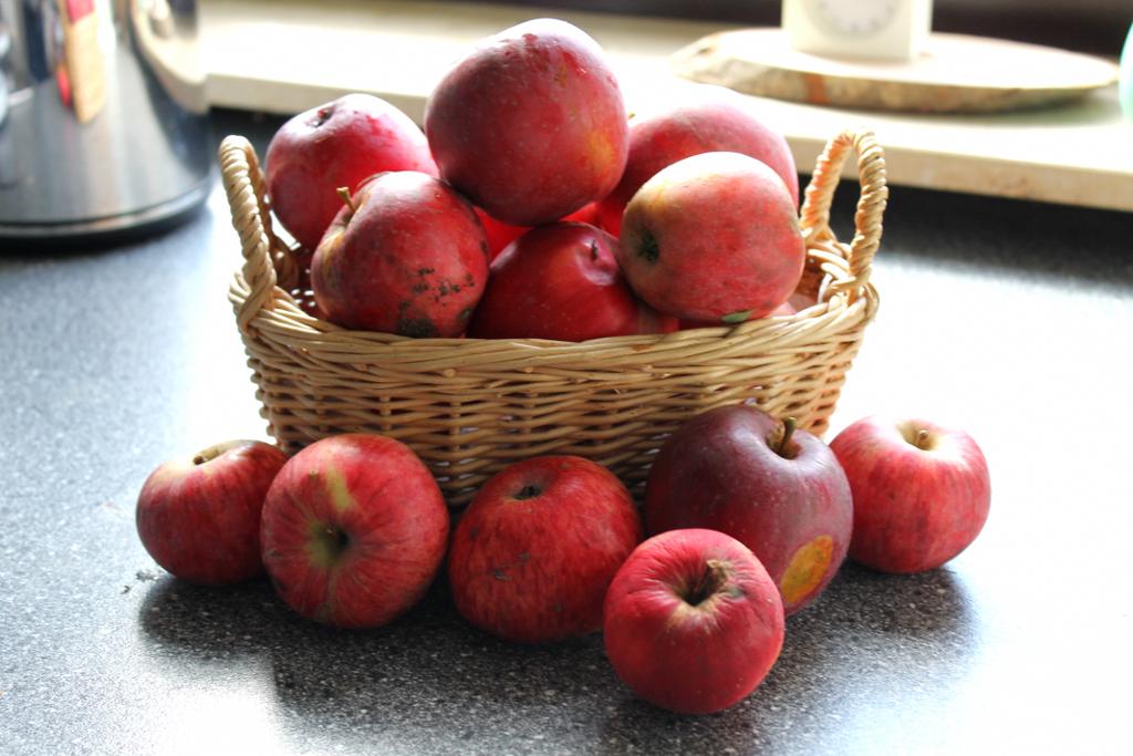 Fallobst Äpfel im Körbchen