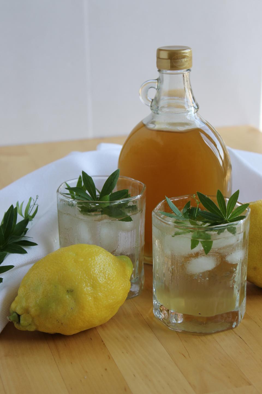 Waldmeistersirup mit Honig in Flasche, davor zwei Gläser mit Waldmeisterlimonade und Waldmeisterblätter, daneben ganze Zitronen und Waldmeisterstängel
